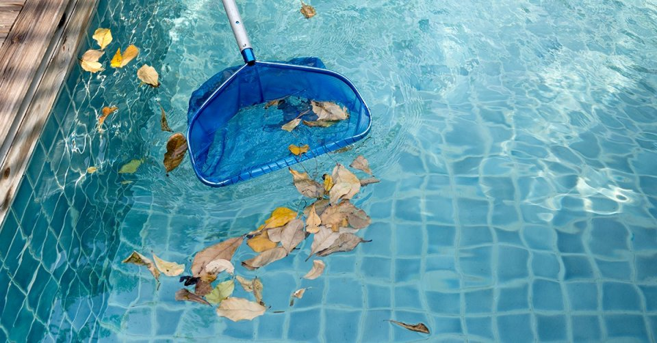How to effectively remove leaves from your pool